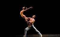 chatelet san francisco ballet 2014